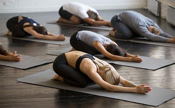 Yoga Classes Taught By  World Class Teachers